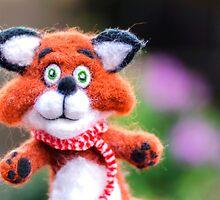Jim the Fox by MMPhotographyUK