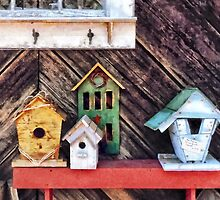 Birdhouses for Sale by Susan Savad