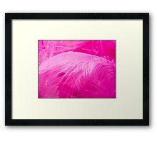Fairy Feathers Framed Print