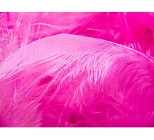 Fairy Feathers Photographic Print