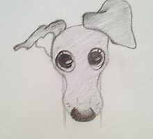 Italian Greyhound Puppy by Lenna Soleil Gonsalves