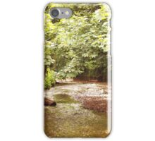 Green hollow stream iPhone Case/Skin