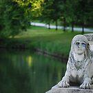The Sphinx by Rowan  Lewgalon
