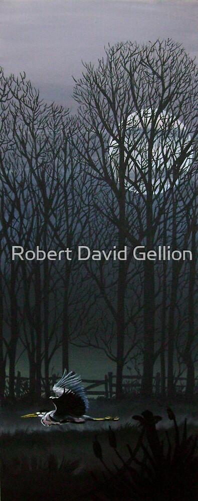 Night flight. by Robert David Gellion