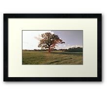 Picturesque Counrtyside Landscape Framed Print