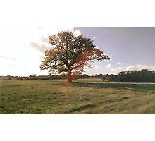 Picturesque Counrtyside Landscape Photographic Print