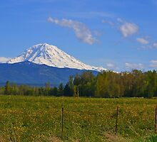 Mount Rainier Splendor by Leona Bessey