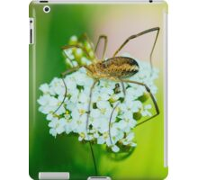 Insect on a white flower macro iPad Case/Skin