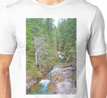 Colorful Mountain Stream  Unisex T-Shirt