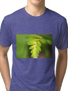 Fern Tri-blend T-Shirt