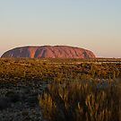 Uluru by davecourt