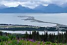 Homer Spit by Barbara Burkhardt