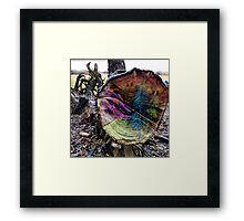 Woodland 2 Framed Print