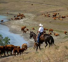 Movin' Out the Cattle by DThiessen