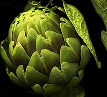 Awesome Artichoke by pat gamwell