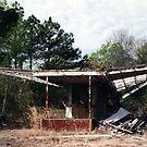 Selma Drive-in, Selma, AL...CLOSED by gailrush
