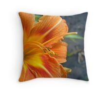Dainty slippers Throw Pillow