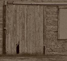 Weathered Wood Door-Sepia by mltrue