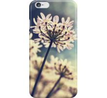 Queen Annes Lace flowers iPhone Case/Skin
