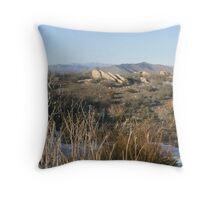 Anza Borrego High Desert Pano Throw Pillow