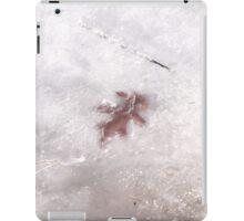Gull Lake Relic Chilled  iPad Case/Skin