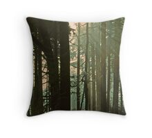 FIR FOREST,SUNRISE,GSMNP,N.C. 1997 Throw Pillow