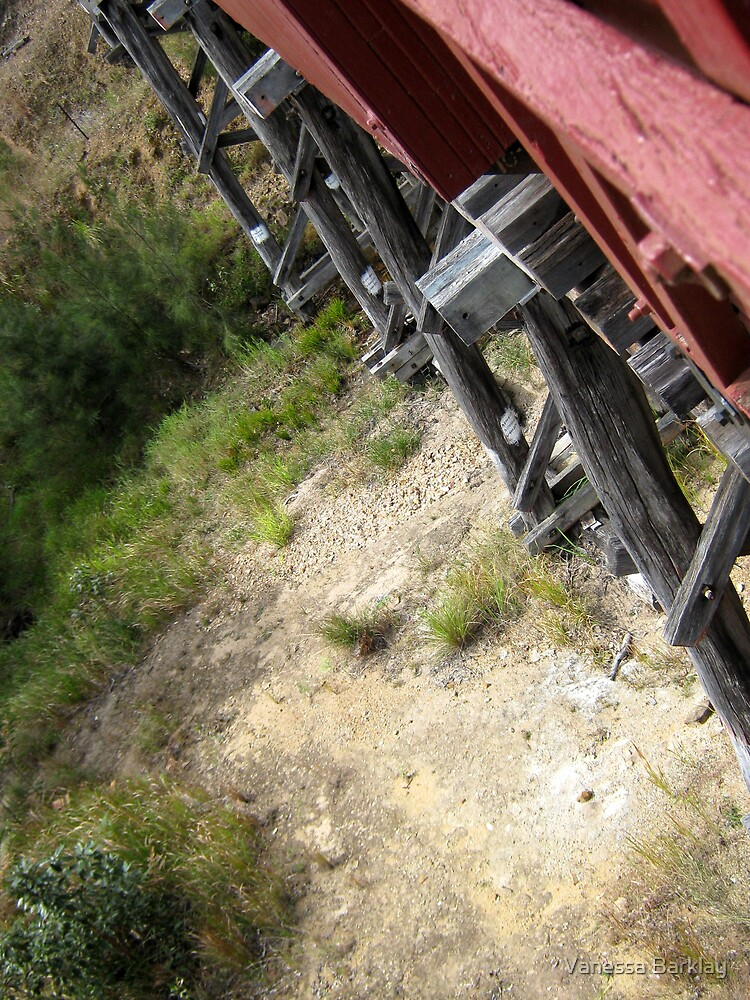 Riding Capella - On The Bridge by Vanessa Barklay