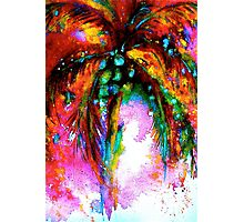 Tropical Fandango Photographic Print