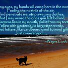 Stretch My Eyes, Estoril, Portugal Beach by Wayne Cook
