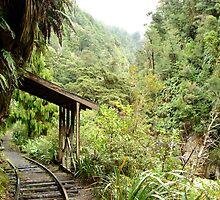 Charming Creek Railway by marklincoln