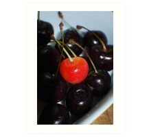 Michigan Cherries  Art Print