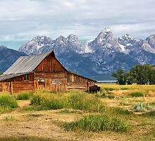 Barn in Grand Tetons by Teresa Zieba