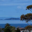 The Noises Islands......Auckland outer harbour.......! by Roy  Massicks