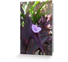 Little Pink Flower Greeting Card