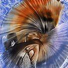 Blue & Orange by Pam Amos