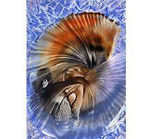 Blue & Orange Photographic Print