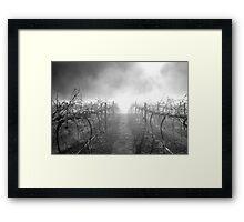 Dead Vineyard Framed Print