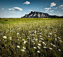 Mt Rundle : Banff National Park by LukeAustin