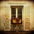 Flowerbox in Paris by creativemonsoon