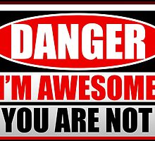 Danger I'm Awesome by TroyBolton17