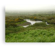 Mist in Ireland Canvas Print