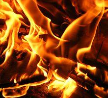 Life in Fire by Matt Langton