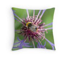 Bee on cornflower Throw Pillow