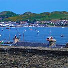 Conwy Harbour - North Wales by Trevor Kersley