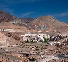 Mantancilla de Atacama by parischris