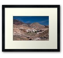 Mantancilla de Atacama Framed Print