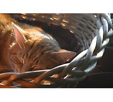 Sleepy Red Boy Photographic Print