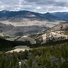 Shoshone Forest Park, Wyoming, USA by AnnDixon