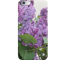 Lilac branch iPhone Case/Skin