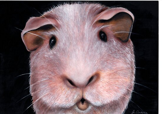 Got any munchies? Acrylic painting 210 views by Margaret Sanderson